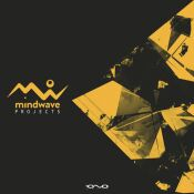 mindwave_-_project_5